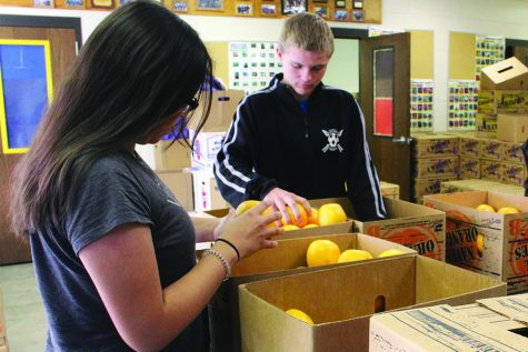 Fruit sales rack up thousands of dollars for upcoming events