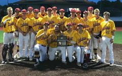 Indian baseball takes Regionals, advances to state