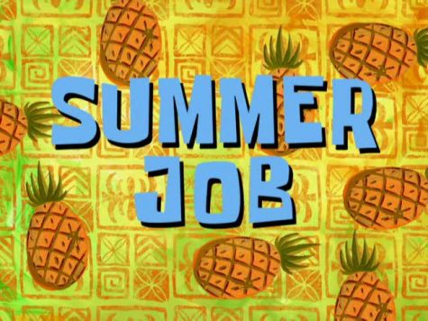 QUIZ: Which summer job should you get?