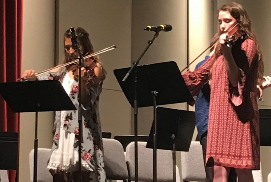 Junior+Alexandria+Hagerman++and+senior+Trinity+Callis+performed+in+the+orchestra%27s+small+group%2C+as+well+as+the+full+orchestra.